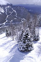 Scenic winter mountain landscape at downhill ski resort in Canadian Rockies