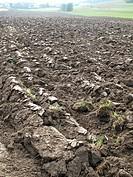 Ploughed field, Kellberg, Passau, Bavaria, Germany