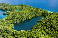 Aerial View of Jellyfish Lake of Palau, Micronesia, Palau