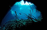 cave cave_diving cenote diver, Tulum Caribbean Sea, Mexico
