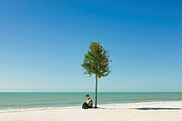 Boy reading book under tree growing on beach