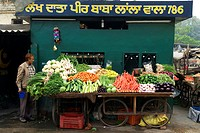 India, Punjab, Patiala, selling vegetables