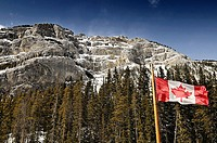 Canadian Rockies and Canadian flag in the Rocky mountains. Drive from Banff to Jasper near Calgary, Alberta, Canada