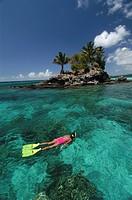 Snorkeling at Palau, Micronesia, Pacific, Palau