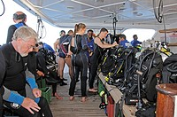 Scuba diver preparing for the Dive, Red Sea, Egypt