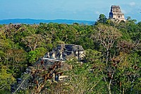 Lost World Temple on the foreground and temple IV on the background. Mayan ruins of Tikal. Guatemala.