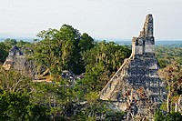 Temple of the Giant Jaguar.Temple I. Mayan ruins of Tikal. Guatemala.