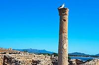Roman Ruins. Roman columns. Nora. Southwest Sardinia. Sardinia. Italy.