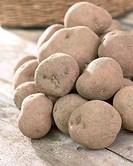 Solanum tuberosum Irene