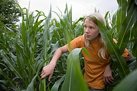 boy, teenager, cornfield, gesture, seeks,