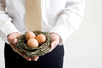 businessman holding a nest