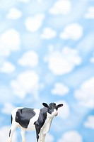 wallpaper and animal shape, cow