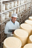 Inspector with clipboard checking young farmhouse cheddar cheese wheels on shelf in cellar
