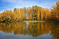 Autumn in LLeida, Spain