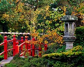 Red Bridge & Japanese Lantern, Autumn, Japanese Gardens, Co Kildare, Ireland