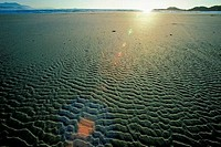 Rippled pattern on sand, Long Beach, Pacific Rim National Park Reserve, Vancouver Island, British Columbia, Canada