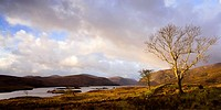 Glenveagh National Park, County Donegal, Ireland, Park And Lake Scenic
