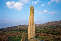 County Cork, Ireland, Ogham Stone
