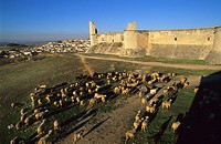 Castle of Chinchon  Madrid  Spain