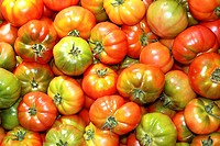 tomatoes in market raff tomato vegetable food from Spain