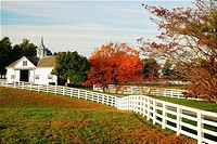 Manchester Farm, Lexington, KY