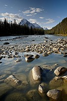 Whirlpool River, Jasper National Park, UNESCO World Heritage Site, Rocky Mountains, Alberta, Canada, North America