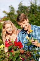 Garten _ gärtnern im Rosenbeet