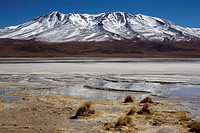 Laguna Hedionda in the southern altiplano near Uyuni in Bolivia