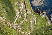 WHALIGOE CAITHNESS Man walking down steep stone steps to cove harbour carved out of seacliff