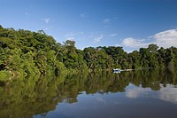 Canal into rainforest _ Tortuguero