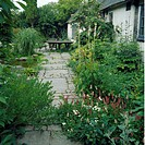 Paved path through borders beside white cottage in country garden in summer