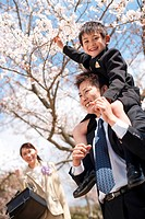Elementary school boy with parents touching cherry blossoms