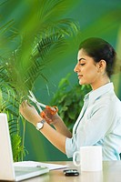Businesswoman pruning a plant
