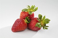 having, lowgrowing, fragaria, genus, plants, various