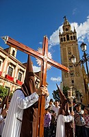 Penitents and Giralda.Calle Argote de Molina. Holy Week procession `El Carmen Doloroso´ Holy Wednesday Seville Spain
