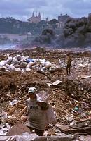 scavengers, person, environment, brazil, 5181, people