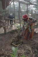 woman home women uganda in najjemba teopista in