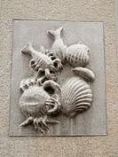 -Seafood-