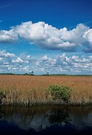 USA, Florida, Everglades, National Park