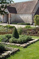 MINI VEGETABLE GARDEN. SQUARE OF LEGUME. MEDIEVAL GARDEN OF WOOD RICHEUX. EURE AND LOIR
