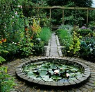 Small water lily pond in garden