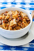 Jambalaya Rice and chicken dish, USA