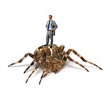 This is a conceptual picture of a business man atop a spider Are you standing on a gold mine or something else