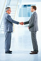Business handshake and trust Two businessmen shanking hands in a light and modern office environment
