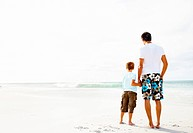 Rear view of a father and son holding hands looking at the peaceful seascape