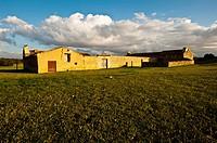 Farm, Almansa, Albacete province, Castilla-La Mancha, Spain