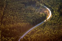 A forest road, aerial view, Sweden.