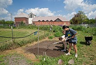 Detroit, Michigan - High school students work in a garden at the Catherine Ferguson Academy, a Detroit public school  The gardeners are volunteers wor...