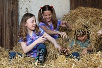 Kids fighting in hay