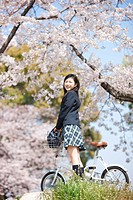 A High School Girl with Bicycle Under Cherry Blossoms